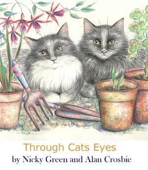 Through Cats Eyes by Spark Deeley
